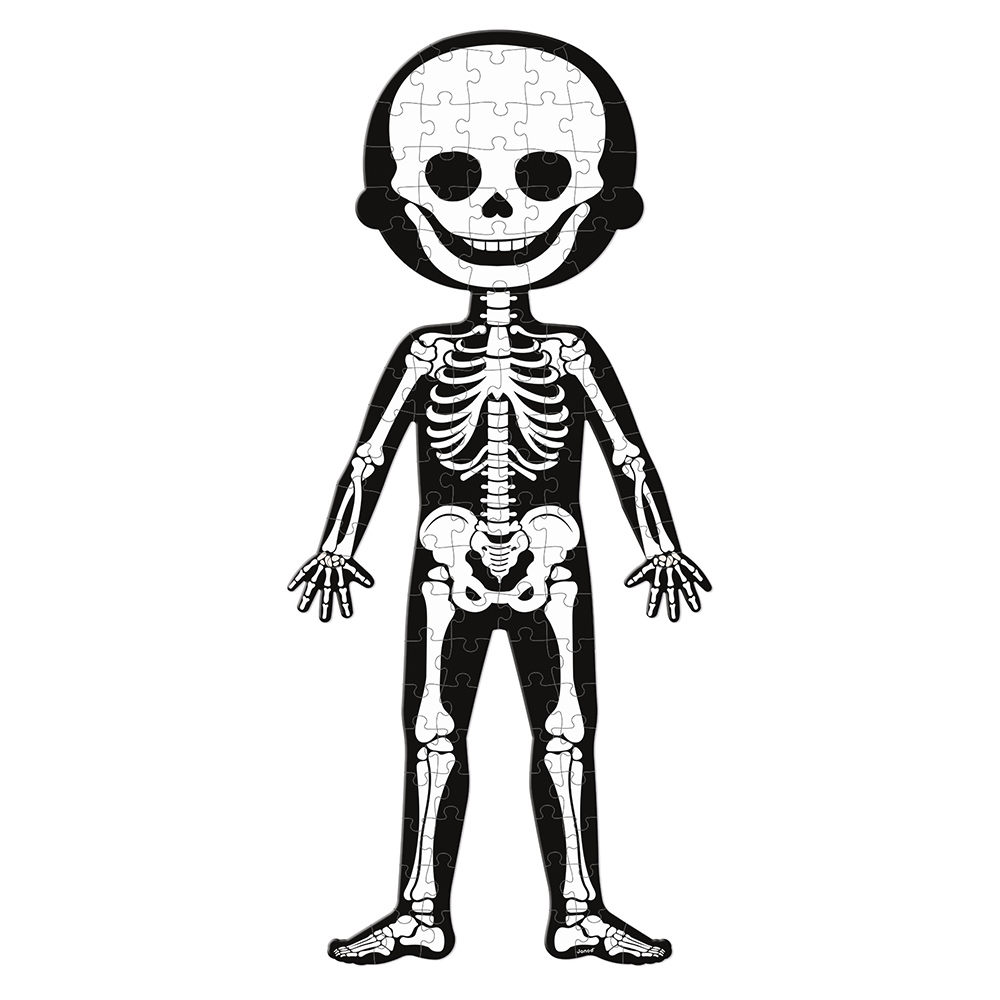 Educational Puzzle Human Body